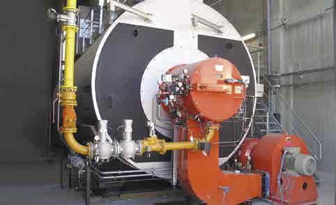 Steam boiler / gas / fire tube / high-pressure - BWR series ...