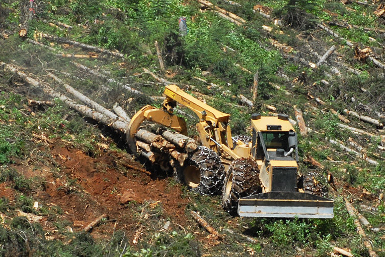 50033 4235307 forestry skidder with grab 630d, 630e tigercat videos  at soozxer.org