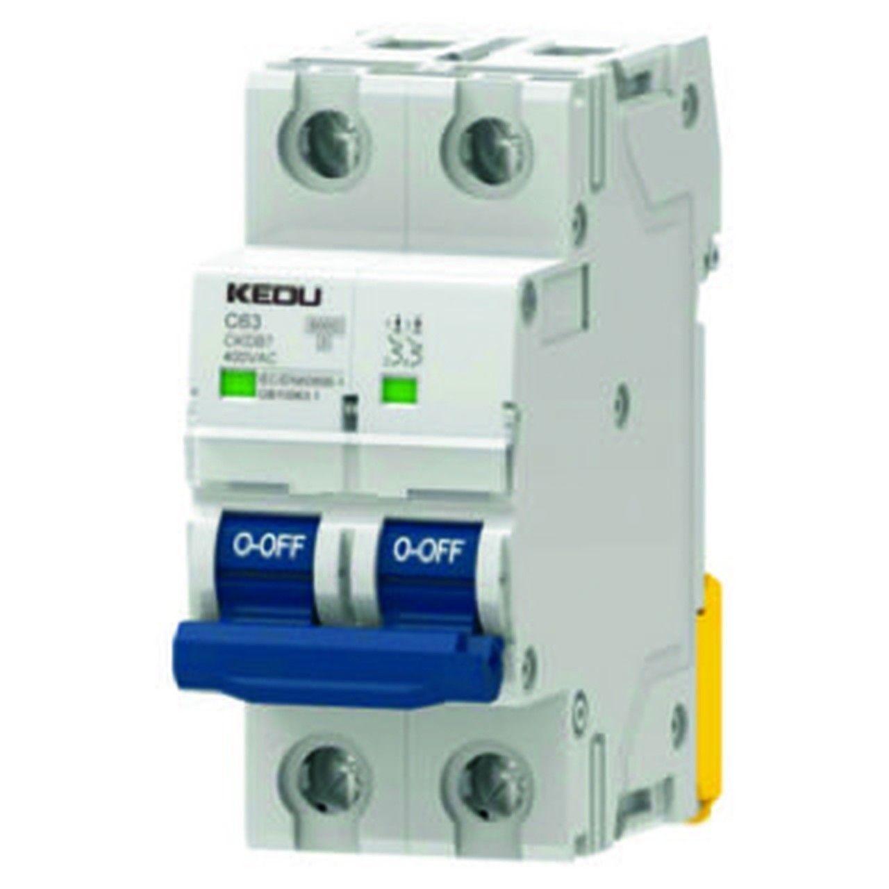 Thermal-magnetic circuit breaker / 2-pole / miniature / DIN rail ...