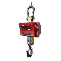 Crane scale with LED display / robust / with rechargeable battery / for the metallurgical industry