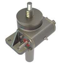Worm screw jack / translating screw / stainless steel