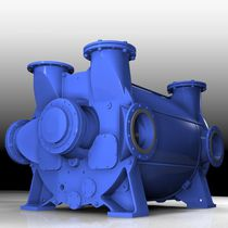 Liquid ring vacuum pump / lubricated / single-stage / chemical process