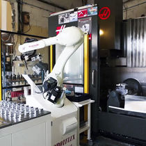 Machine tool robot / articulated / 6-axis / loading