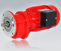 Asynchronous electric gearmotor / three-phase / single-phase / coaxial