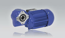 Single-phase electric gearmotor / three-phase / hollow-shaft / worm