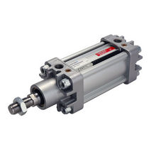 Pneumatic cylinder / single-acting