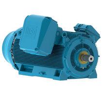AC motor / three-phase / asynchronous / 400V