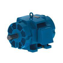 AC motor / asynchronous / 575V / IP23