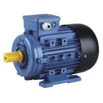 Three-phase motor / asynchronous / 230 V / 220 V