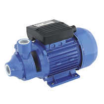 Clear water pump / with electric motor / peripheral / automatic