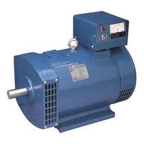 Single-phase alternator / 4-pole / AC voltage / generator