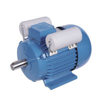 Single-phase motor / induction / 220 V / IP44