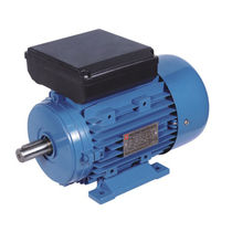 Single-phase motor / induction / energy-saving / for pumps