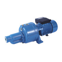 Clear water pump / for chemicals / oil / with electric motor