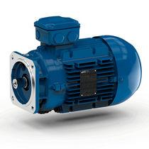 AC motor / three-phase / asynchronous / 4-pole