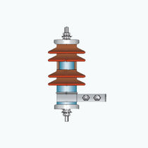 Housed surge arrester