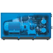 Air compressor / screw / oil-free / stationary
