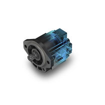Gear hydraulic motor / variable-displacement / aluminum