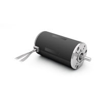 DC motor / brushless / 24V / with brake
