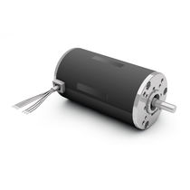 DC motor / brushless / 24V / high-power