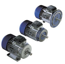 AC motor / asynchronous / 22 V / forced air-cooled