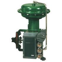 Motorized valve positioner / rotary