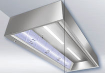 Ceiling-mount air purifier / UV light