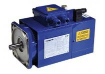 AC servomotor / three-phase / asynchronous / vector control