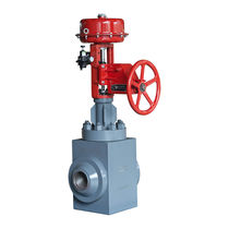Globe valve / pneumatically-operated / control / for water