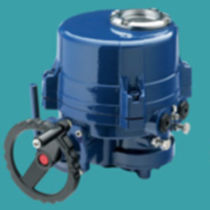 Electric valve actuator / part-turn / worm gear / bus-capable