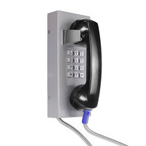 Vandal-proof telephone / IP54 / weather-resistant / analog