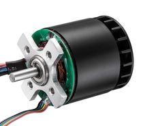 DC motor / brushless / 48V / 36V
