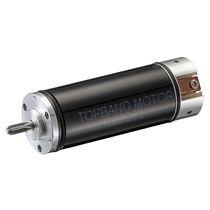DC motor / brushless / 36V / coreless