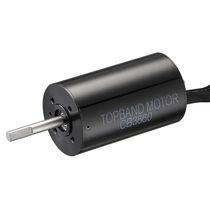 DC motor / brushless / 24V / 36V
