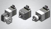 AC electric servo-motor / brushless
