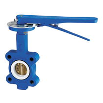 Butterfly valve / manual / wafer