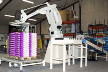 Articulated palletizer / bag / robotic