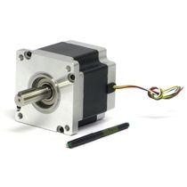 DC motor / stepper / 80 V / bipolar