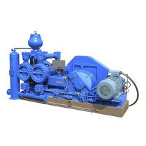 Chemical pump / slurry / electric / piston