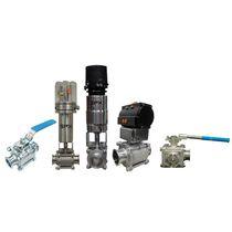 Ball valve / lever / control / foodstuffs