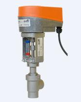 Fluid valve / motorized