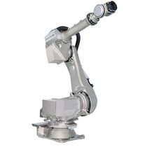 Articulated robot / 6-axis / washing / industrial