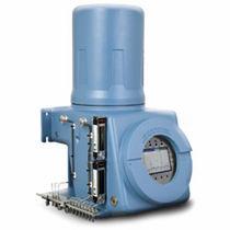 Gas chromatograph / FID / process