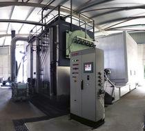 Biomass heater