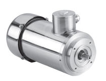 DC motor / brushed