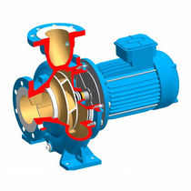 Wastewater pump / for clear water / electric / centrifugal