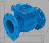 Swing check valve / flange
