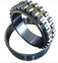 Cylindrical roller bearing / double-row
