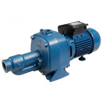 Clear water pump / electric / centrifugal / cast iron