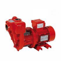 Diesel fuel pump / electric / rotary vane / self-priming